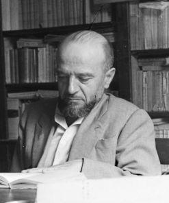 Fernando Losavio
