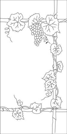 ceiling light lens grape vine and door grapes images
