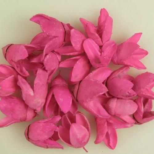 Bakuli pink