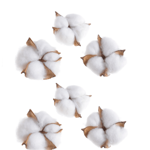 Bumbac capete alb