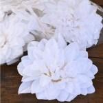 Cap floare Dahlia D20 alb