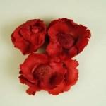 Capete flori Cocos Rosu set