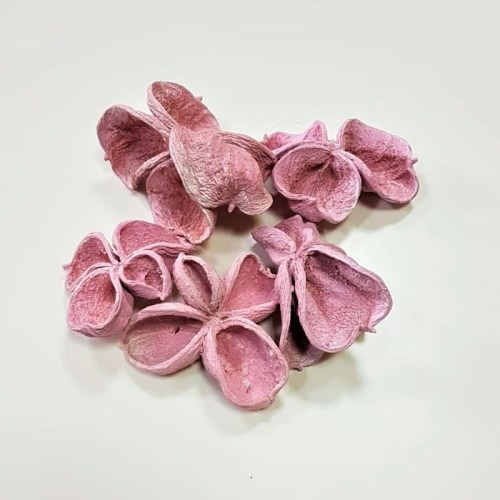 Flori lotus roz deschis b