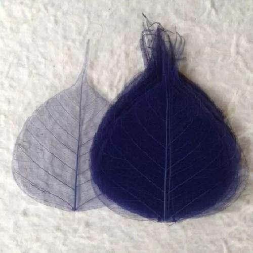 Frunze Voal Albastru Intens