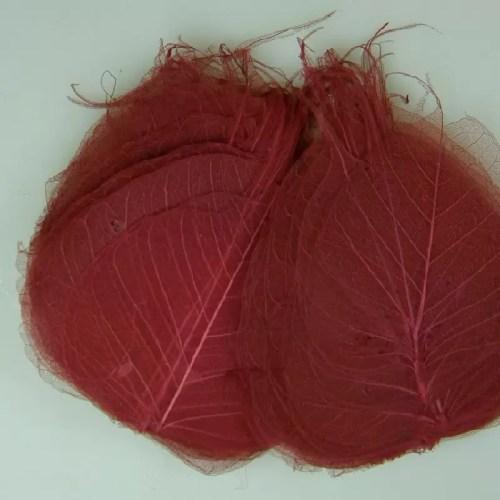 Frunze Voal Rosu Burgund 1