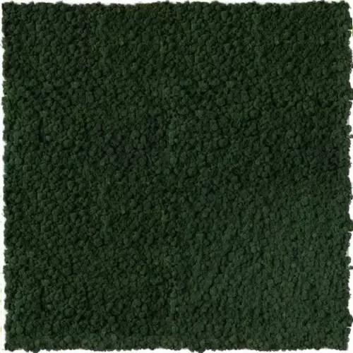 Gradina verticala licheni conservati ARTFLORA GreenBroccoli
