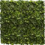 Gradina verticale plante conservate ARTFLORA Ivy
