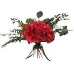 Hortensia conservata rosie natur
