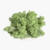 Licheni Albastru Verde Deschis Menta 500gr