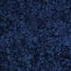 Licheni conservati Blue Intense