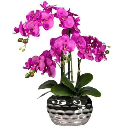Orhidee fucsia in ghiveci argintiu 55cm