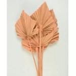 PU Frunza palmier mediu Roz Somon set 10 buc