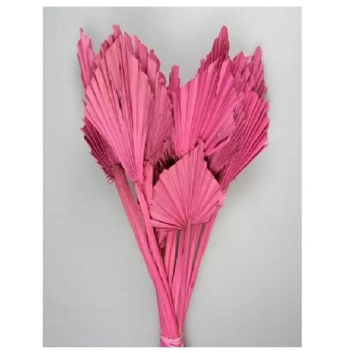 PU Frunza palmier mini Pink set 10 buc