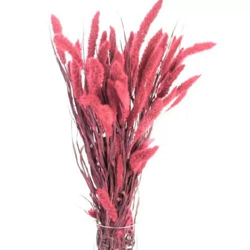 PU Setaria iarba Roz set