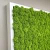 Tablou licheni stabilizati detaliu