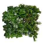 g ivy green 33