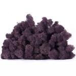 licheni vrac artflora mov intens