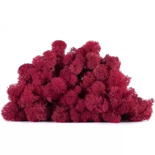 licheni vrac artflora red carmin