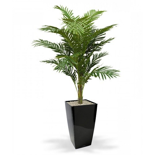 palmier areca artificial h150 1