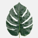 Frunza Philodendron verde inchis h66