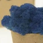licheni premium royal blue 1