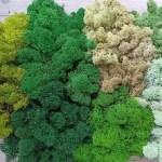 artflora green standard color