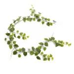 Ghirlanda Philodendron verde Min 180cm