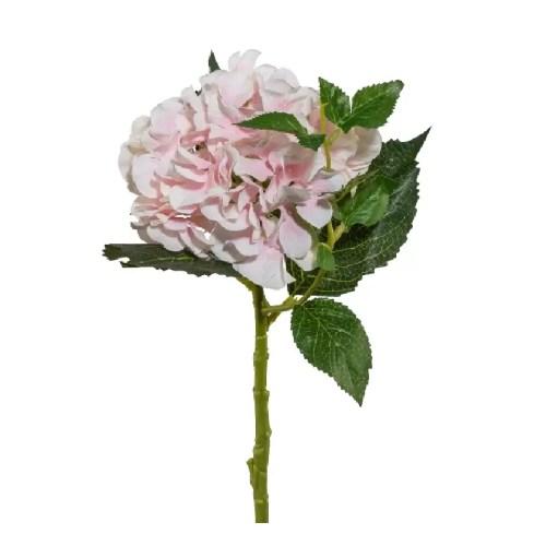 Hortensie fir roz 46 cm