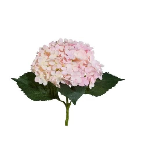 Hortensie fir roz 53 cm