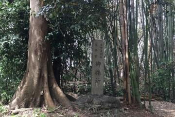 Hutan Bambu Berdarah Shigai No Mori