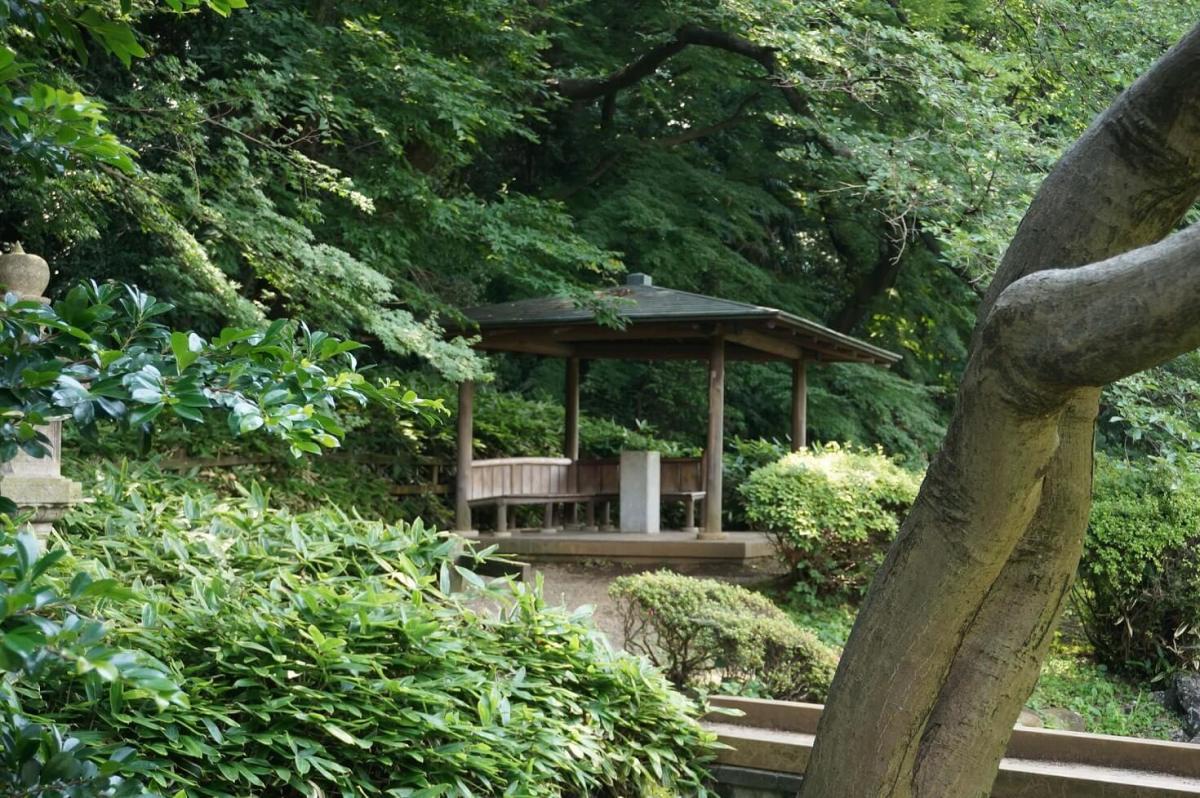 Taman Dan Kebun Besar Yang Indah Dalam Shinjuku Gyoen