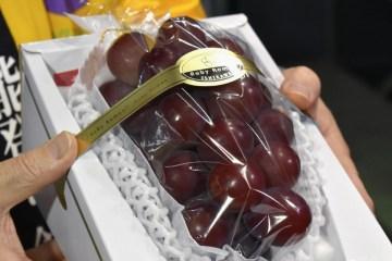 Sebuah Anggur Dengan Kualitas Premium Terjual Dengan Harga 1 Juta Yen