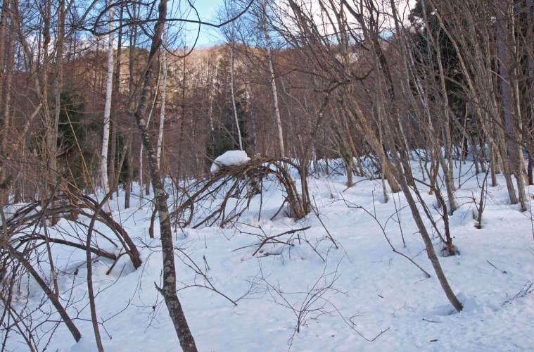 Misteri Kisah Hantu Ski Resort Jepang
