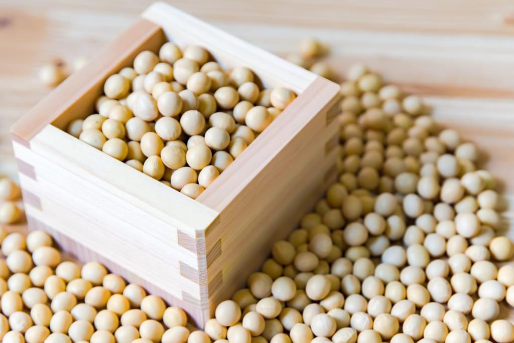 Makanan Mengandung Kedelai 5 Makanan Sehat Dalam Kuliner Jepang 2