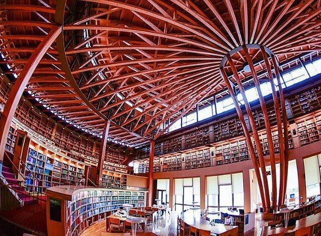 Menghabiskan Waktu Di Perpustakaan Colosseum Nakajima Sambil Membaca Dan Belajar 4