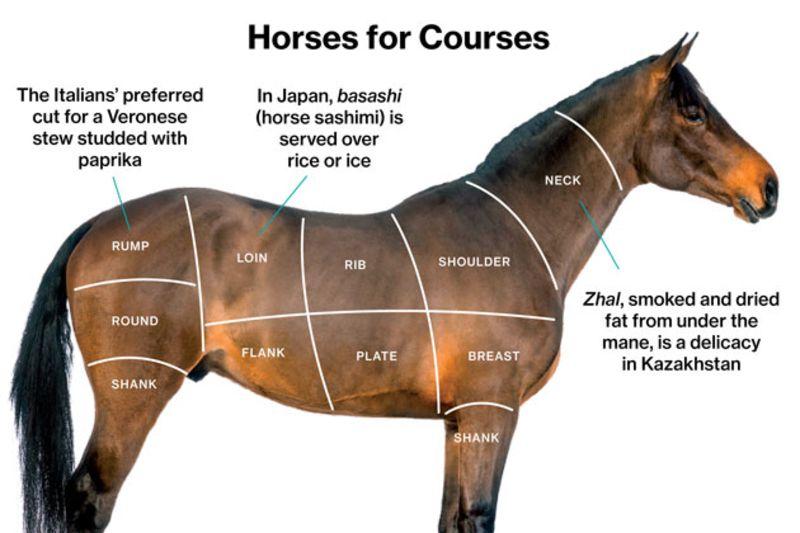 Penasaran Dengan Hidangan Basashi Tapi Takut Mencoba?? Ini Dia Deskripsi Rasa Daging Kuda !