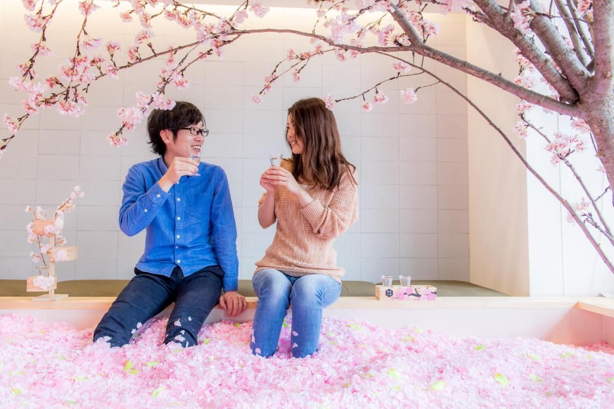 Ingin Sensasi Unik Dan Foto Selfie Dengan Bunga Sakura ? Kunjungi Sakura Chill Bar Yang Buka Dalam Waktu Terbatas !