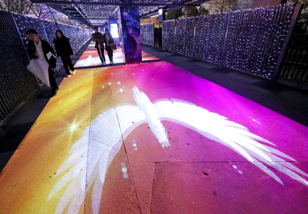 "Kunjungi Terowongan Indah ""TWINKLE TUNNEL"" Dalam Acara Tokyo Mega Illumination 2019 !"