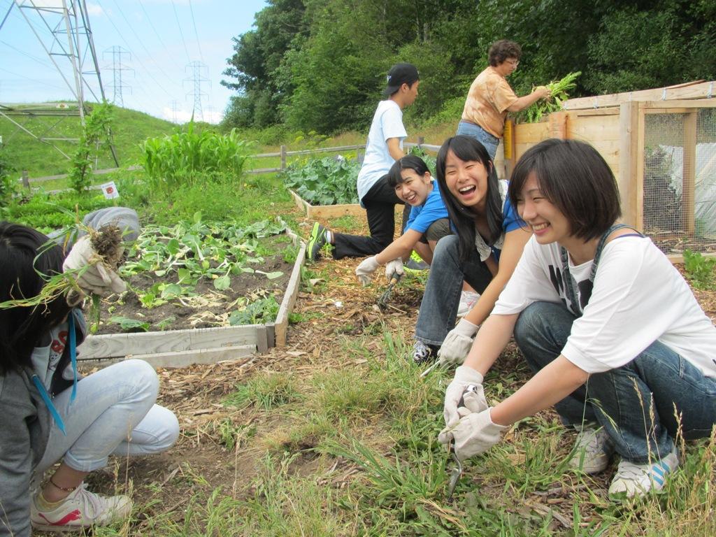 6 Sikap Positif Paling Populer Dari Masyarakat Jepang Yang Patut Kita Contoh !