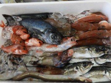 Joban-Mono : Ikan Terenak Di Jepang Yang Juga Menjadi Salah Satu Cara Kota Iwaki Untuk Mempromosikan Diri Kepada Dunia Luar