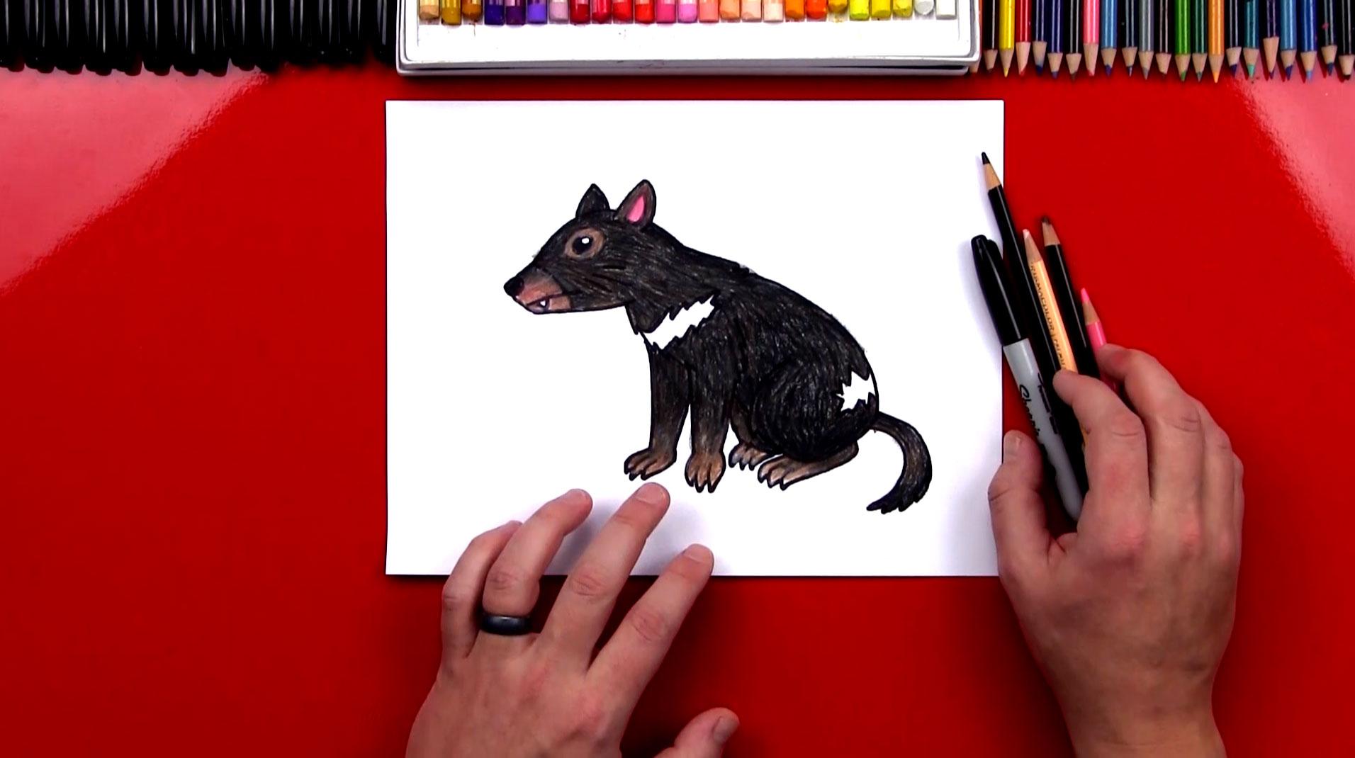 How To Draw A Tasmanian Devil Art For Kids Hub