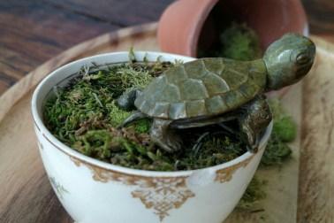 bronze turtle mini side view