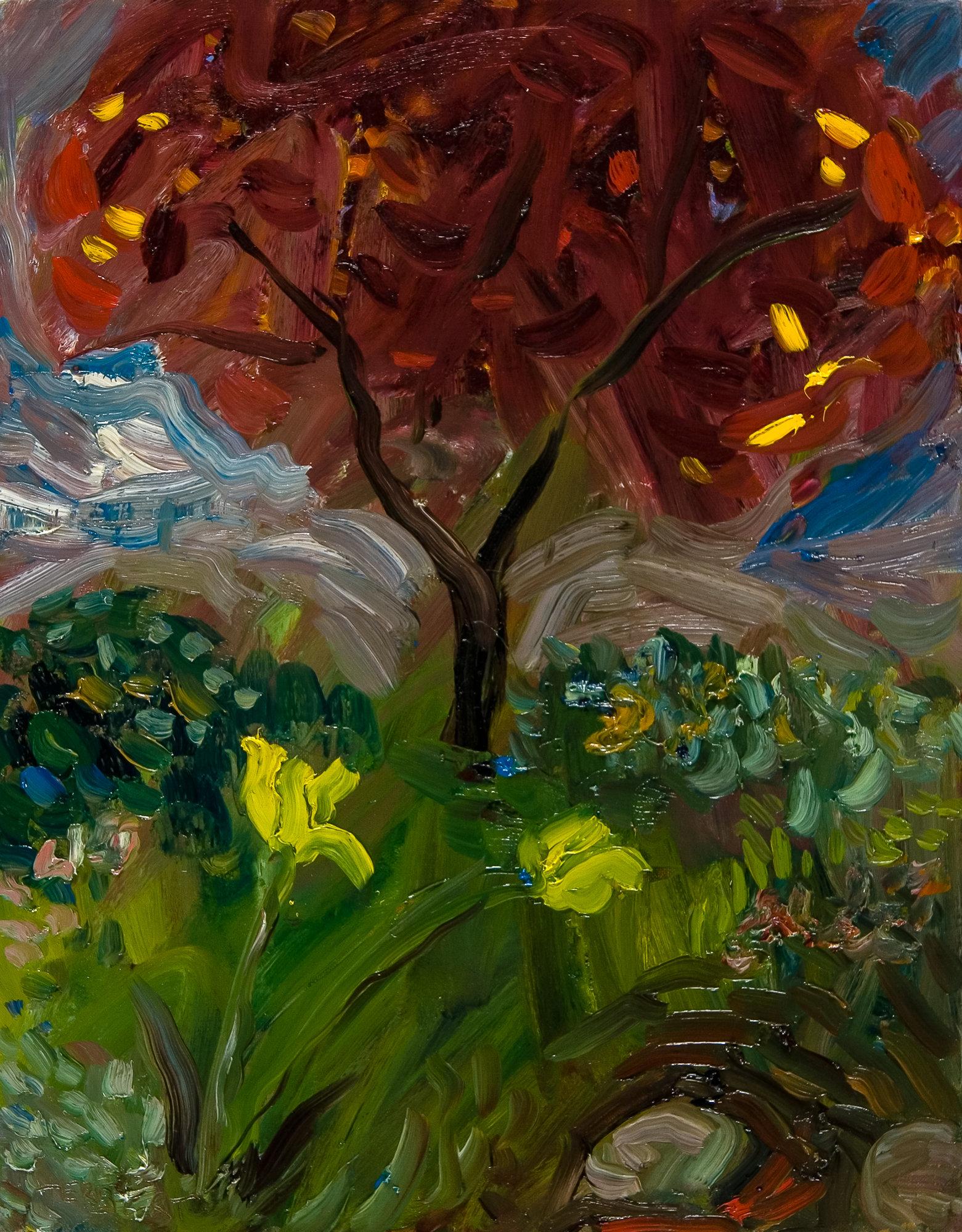 Amazing Garden 2o3 By Jonathan Herbert Oil Painting