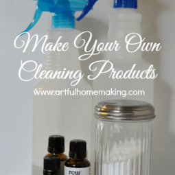 Make Your Own Cleaning Products {Day 14}
