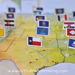 Pin It! Maps U.S. History Bundle Review