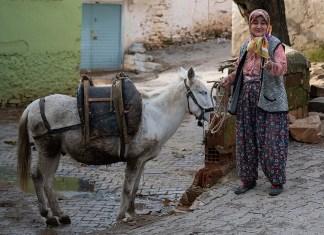 Bir köy hikayesi: Sarıyurt