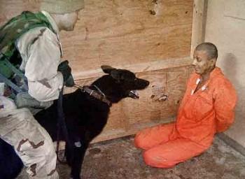 Torture USA