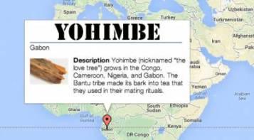 natural aphrodisiacs: yohimbe