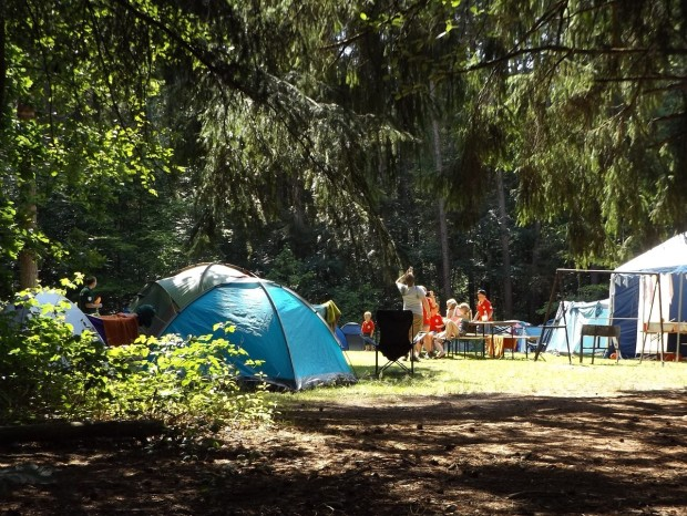 summer break: campsite in sunshine
