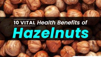 Photo of Top 10 Health Benefits of Hazelnut